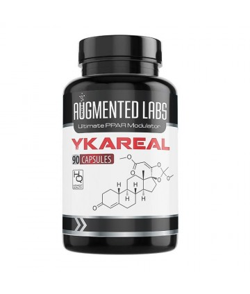 AUGMENTED LABS YKAREAL...